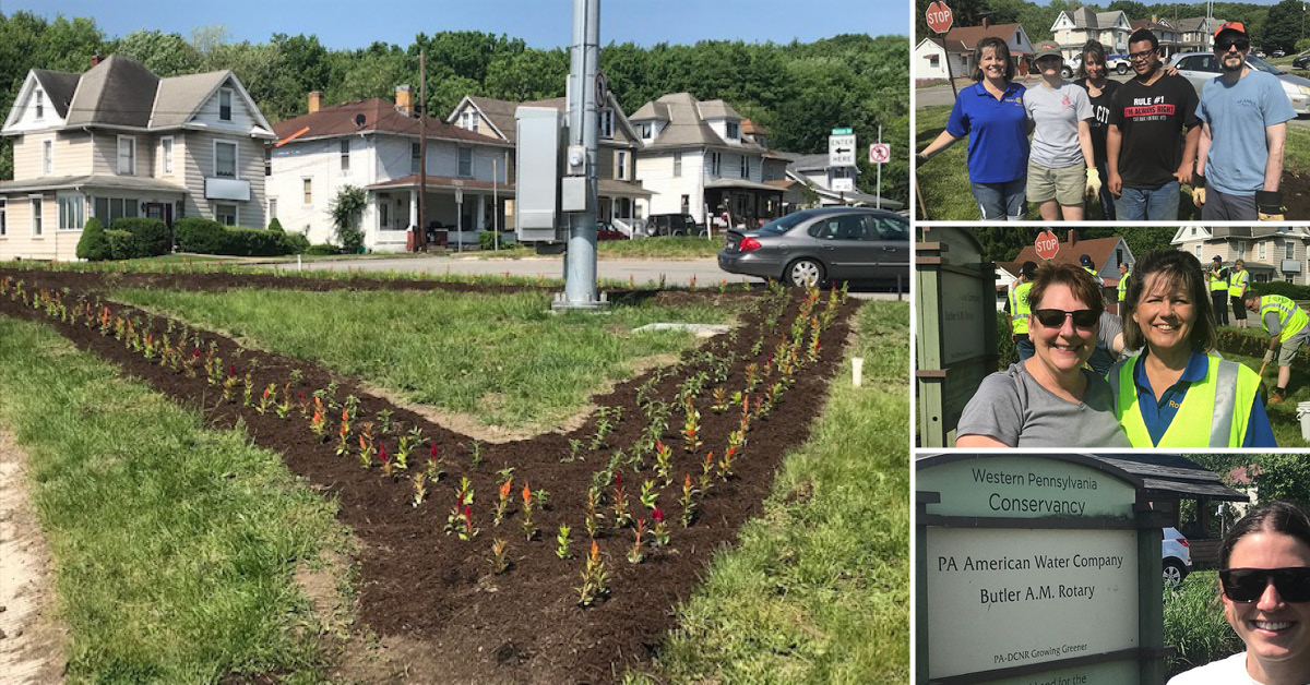 Flower Planting 2019 Montage